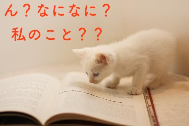 読まれるチラシは?